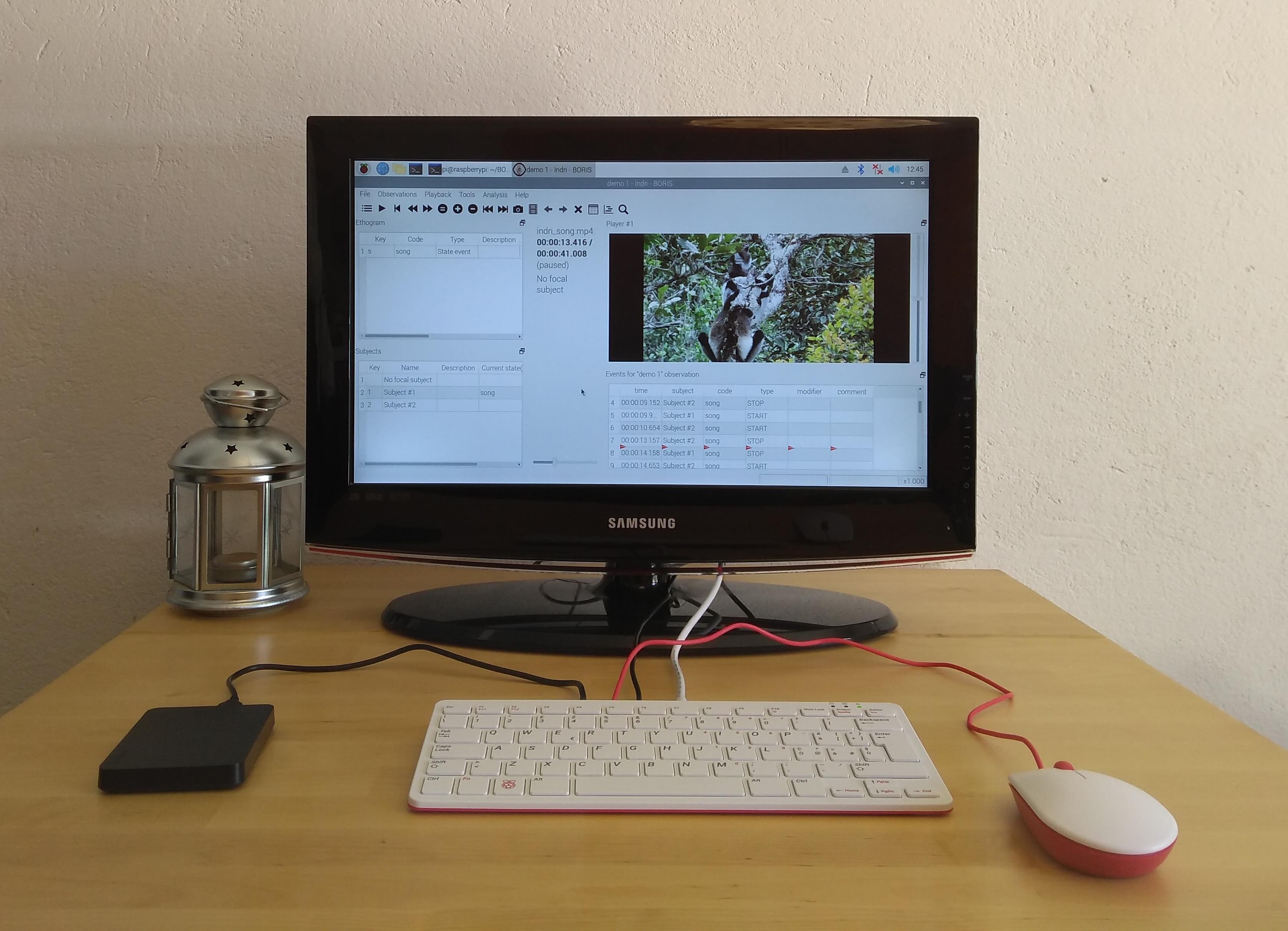 BORIS running on a Raspberry 400 Pi